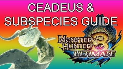 Goldbeard Ceadeus Guides