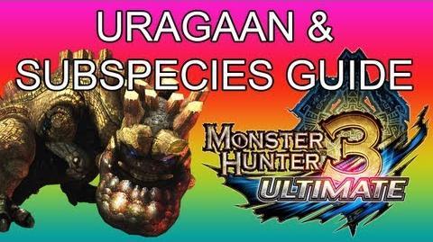 Steel Uragaan Guides
