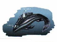 Concept-Shark