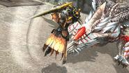 FrontierGen-Harudomerugu Screenshot 024