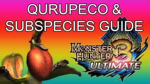 Crimson Qurupeco Guides
