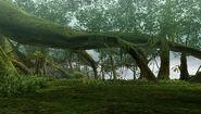 MHFO-Gran Bosque 005