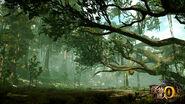 MHOL-Bosque Ermitaño 003