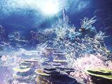 Altiplanos Coralinos