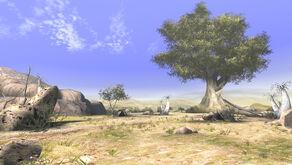 Llanos Arenosos
