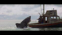 Jaws Breach.jpg