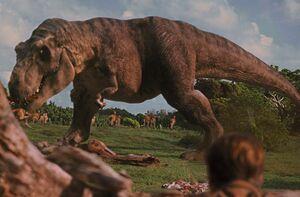 Female T. rex eating a Gallimimus