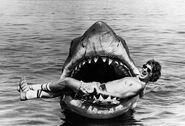 Jaws15 slide-0edae03fce416754a138a46557f7e70b31ce654a-s6-c30