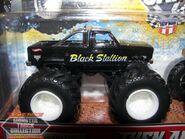 2012 SE-TN Black Stallion (2)