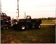 BlackStallion1989