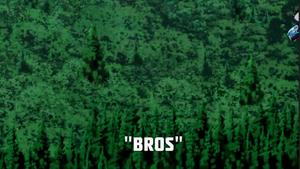 Bros.png
