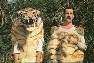 Men in tiger costume