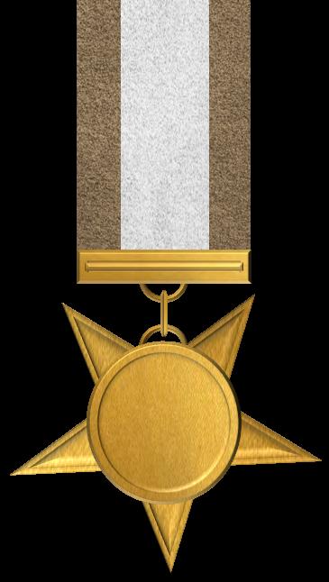 Argus Campaign Medal