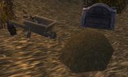Dustwallow Grave