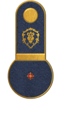 SWA Ensign.png