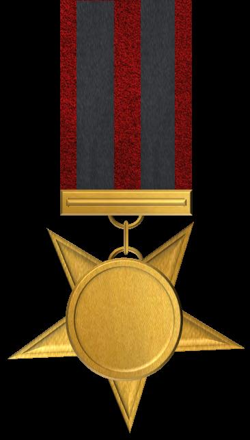 Alliance-Horde War Campaign Medal