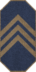 GAN Master Warrant Officer.png
