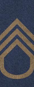 SWA Master Sergeant.png