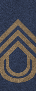 SWA Chief Sergeant.png