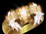 Champion's Ring: Paladin