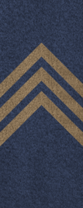 SWA Sergeant.png