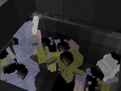 Trans-hide-3.jpg