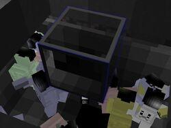 Trans-hide-2.jpg