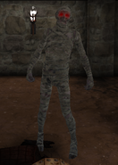 Enemy mummy infected