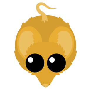 Golden Mouse