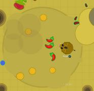 Warthognquicksand