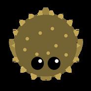 Pufferfish2
