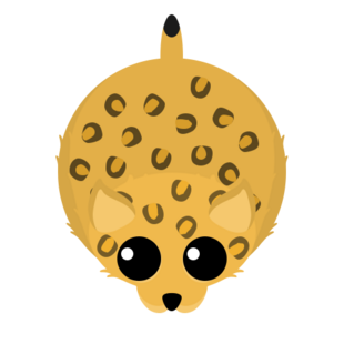 Old Leopard