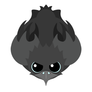 Ash Phoenix