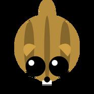 A chipmunk