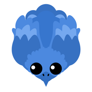 Aqua Phoenix