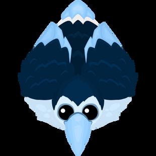Ice Toucan