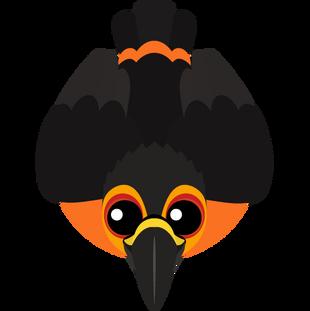 Lava Toucan