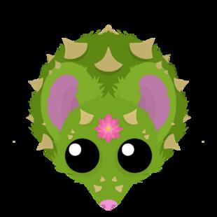 Cacti Rat (H)