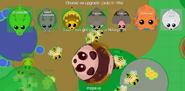 PandaUpgrade