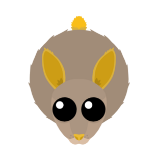 Gold Trim