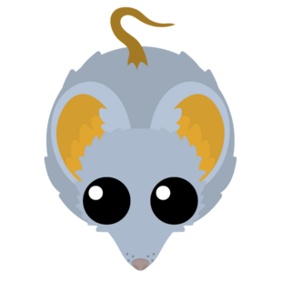 Gold Trimmed Mouse