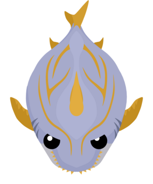 Gold Trimmed Shark