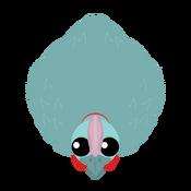 Cotton Cassowary.png