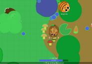 Deer-ability2