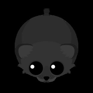 Black Lion Cub