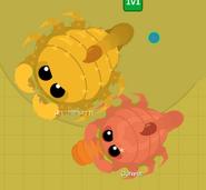 ScorpionBrothers