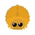 Golden Yeti.png