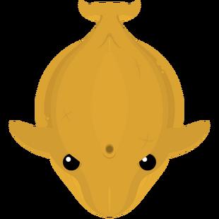 Golden Blue Whale