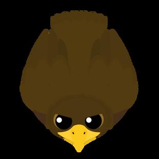 Older Golden Eagle