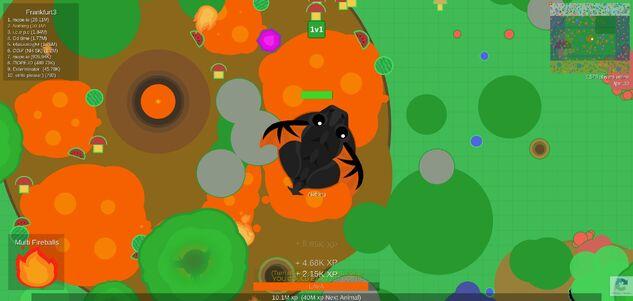 **black dragon**.jpg